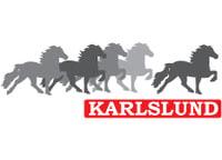 Islandssadlar från Karlslund